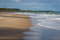 Las playas-Pontal brasileñas hacen Coruripe, Alagoas Foto de archivo libre de regalías