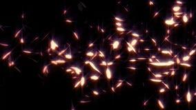 Las plumas rojas que brillan intensamente que caen colocan el elemento gráfico cubierto almacen de video