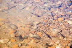 Las porciones de bebé pescan en el agua de río Fotos de archivo