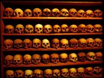 Las porciones de bella arte del papel pintado del fondo de los cráneos imprimen sorprender foto de archivo libre de regalías
