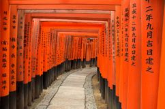 Las puertas de Torii de Fushimi Inari Shrine en Kyoto, Japón Imagen de archivo libre de regalías