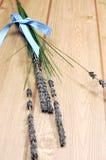 Las puntillas de la lavanda florecen atado en la cinta azul del lunar - vertical. Imagen de archivo