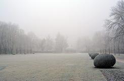 Las ramas cubrieron la escarcha en el parque al día de invierno Foto de archivo
