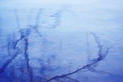 Las ramas de árboles se reflejan en la superficie azul del agua imagen de archivo libre de regalías