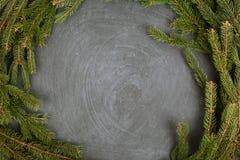 Las ramas de la picea que mienten en la pizarra Fondo negro del árbol de navidad Año Nuevo Fotos de archivo
