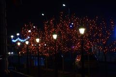Las ramas de los árboles de la calle, adornadas con las luces rojas Fotografía de archivo