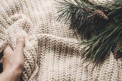 Las ramas verdes y la mano del abeto que se considera acogedoras calientan el suéter hecho punto, s Imagen de archivo libre de regalías