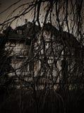 Las ramificaciones asustadizas secan el árbol, y la casa encantada Foto de archivo libre de regalías