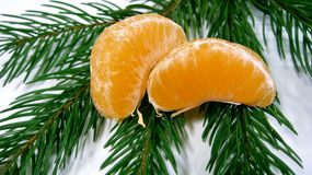 Las rebanadas anaranjadas brillantes apetitosas de mandarinas mienten en una rama verde hermosa de un árbol en un fondo blanco 76 foto de archivo