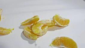 Las rebanadas anaranjadas caen en el fondo blanco en la cámara lenta almacen de metraje de vídeo