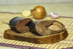 Las rebanadas de arenques mienten en una rebanada de primer del pan negro imagen de archivo