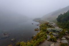 las reflexiones de árboles en el lago riegan en la niebla de la mañana Foto de archivo