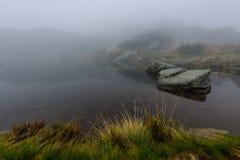 las reflexiones de árboles en el lago riegan en la niebla de la mañana Fotos de archivo