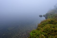las reflexiones de árboles en el lago riegan en la niebla de la mañana Fotos de archivo libres de regalías