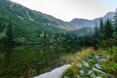 las reflexiones de árboles en el lago riegan en la niebla de la mañana Imagen de archivo