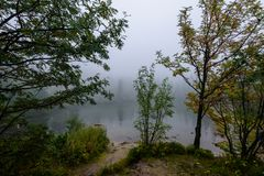 las reflexiones de árboles en el lago riegan en la niebla de la mañana Fotografía de archivo