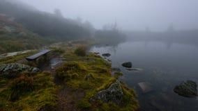 las reflexiones de árboles en el lago riegan en la niebla de la mañana Imagenes de archivo