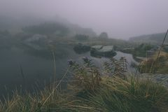 las reflexiones de árboles en el lago riegan en la niebla de la mañana - vin Fotografía de archivo libre de regalías