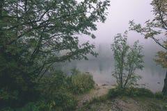 las reflexiones de árboles en el lago riegan en la niebla de la mañana - vin Fotografía de archivo