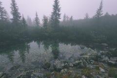 las reflexiones de árboles en el lago riegan en la niebla de la mañana - vin Imagen de archivo