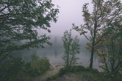 las reflexiones de árboles en el lago riegan en la niebla de la mañana - vin Foto de archivo libre de regalías