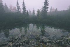 las reflexiones de árboles en el lago riegan en la niebla de la mañana - vin Imagen de archivo libre de regalías