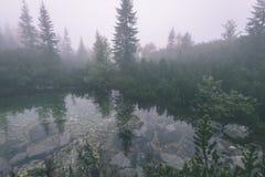 las reflexiones de árboles en el lago riegan en la niebla de la mañana - vin Imagenes de archivo