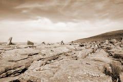 Las rocas de la sepia en rocoso montañoso burren paisaje Imagenes de archivo