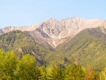Las rocas de las montañas cubiertas con la madera densa Fotografía de archivo libre de regalías