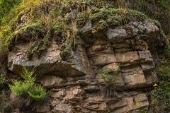 Las rocas emparedan con las plantas silvestres en él Imagen de archivo libre de regalías