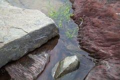 ¿Las rocas? qué los tienen que hacen abajo allí? Imagenes de archivo