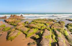 Las rocas y el musgo extraños en Co Thach varan Imagen de archivo libre de regalías