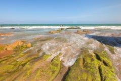 Las rocas y el musgo extraños en Co Thach varan Fotos de archivo