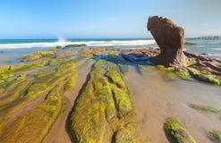 Las rocas y el musgo extraños en Co Thach varan Imagenes de archivo