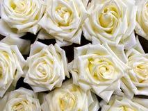 Las rosas blancas arreglaron para la textura y el fondo florales Imagen de archivo