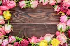 Las rosas enmarcan en fondo de madera Flores en la madera Fotografía de archivo libre de regalías