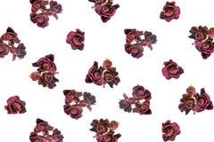 Las rosas oscuras rojas secadas hermosas tienen gusto como fondo Imagen de archivo libre de regalías