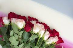 Las rosas rojas y blancas ponen completamente en fondo de madera pintado Imágenes de archivo libres de regalías
