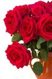 Las rosas rosadas oscuras se cierran para arriba Imagenes de archivo