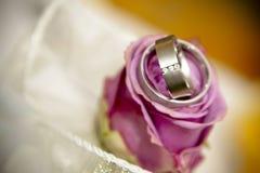 Las rosas son pares de anillos de bodas. Imagenes de archivo