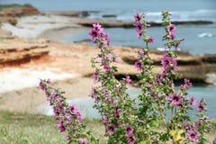 Las Rotas beach,Denia,Costa Blanca,Alicante,Spain Royalty Free Stock Images