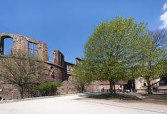Las ruinas de Heidelberg se escudan - el primer de la torre separada con las ventanas vacías al lado de poner en contraste árbole imagenes de archivo