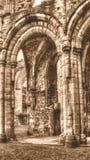 Las ruinas de la sepia cisterciense de HDR del monasterio de la abadía E de Netley entonan Fotografía de archivo