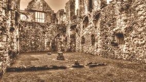 Las ruinas de la sepia cisterciense de HDR del monasterio de la abadía H de Netley entonan Imagenes de archivo