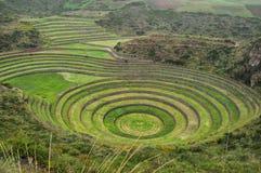 Las ruinas de Moray Inca, Perú imagen de archivo libre de regalías