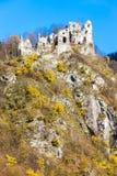 Las ruinas del castillo llamaron el hrad de Stary cerca de Strecno Imagen de archivo libre de regalías