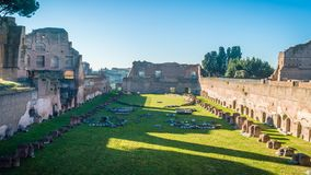 Las ruinas en la colina de Palatino en Roma en un día de invierno soleado brillante, enfocan adentro almacen de metraje de vídeo