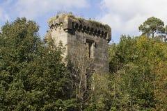 Las ruinas escocesas de un castillo perdieron en el bosque foto de archivo