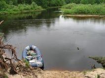 Las, rzeka Obrazy Stock
