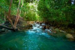 Las, rzeka, wiosna - Bie??ca woda, woda, las fotografia royalty free